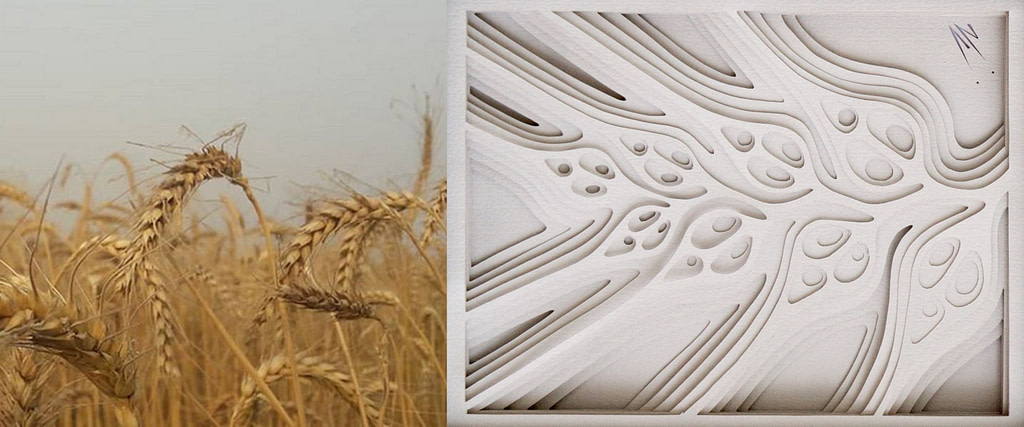 """comparativa de proceso creativo entre un campo de espigas de trigo y cuadro en papel """"brizna"""""""