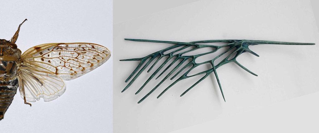 """comparativa de proceso creativo  entre una cigarra o chichara y la escultura de la serie alas """"chicharra"""""""