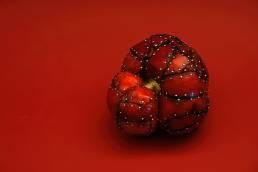 fotografía de frutas y vegetales híbridos