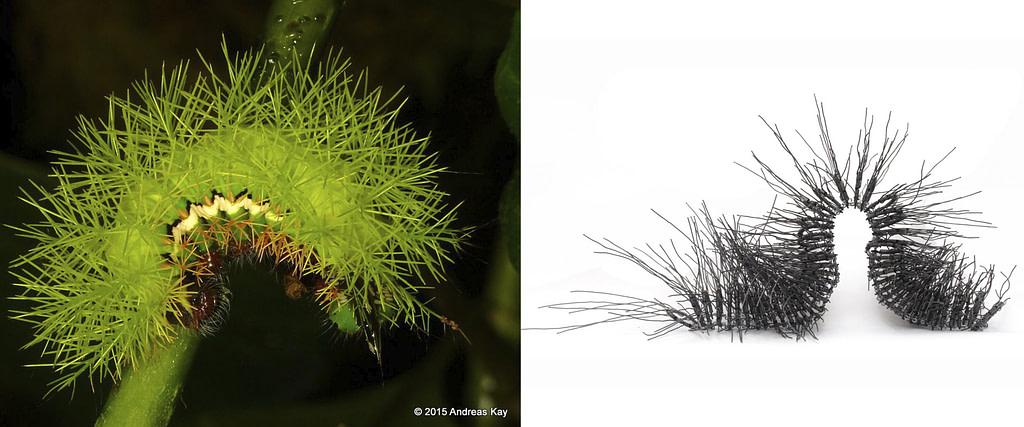 """comparativa de proceso creativo  entre una oruga verde y la escultura articulada en metal """"oruga N°1"""""""